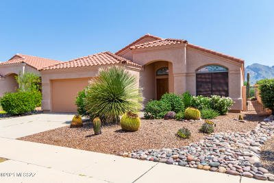 Oro Valley Single Family Home For Sale: 11070 N Sand Pointe Drive