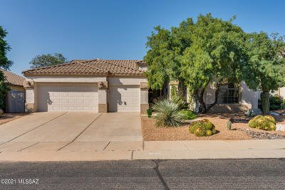 Oro Valley Single Family Home For Sale: 13103 N Pioneer Way