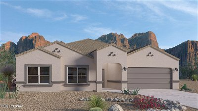 Vail Single Family Home For Sale: 8655 S Robins Nest Place