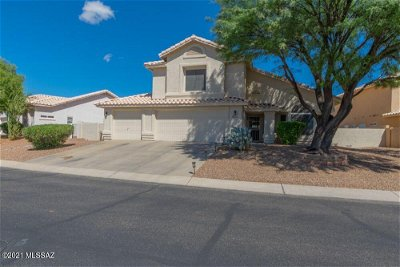 Oro Valley Single Family Home For Sale: 10668 N Sand Canyon Place