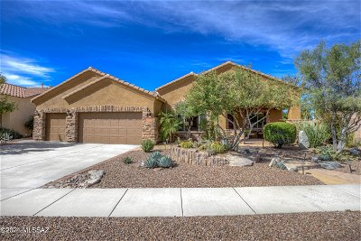 Marana Single Family Home Active Contingent: 12987 N Ocotillo Bluff Place