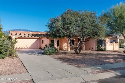 Oro Valley Single Family Home For Sale: 12946 N Eagleview Drive