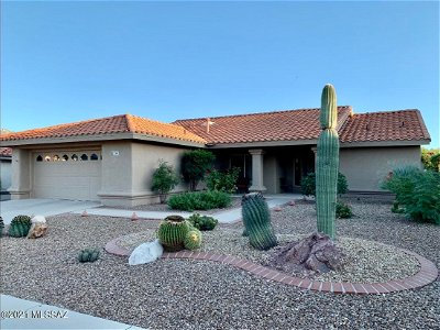 Oro Valley Single Family Home For Sale: 2364 E Chrysanthemum