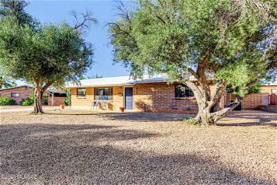 Tucson Single Family Home For Sale: 825 E Mitchell Drive