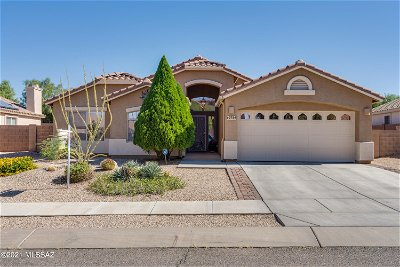 Vail Single Family Home For Sale: 10759 S Distillery Canyon Spring Drive