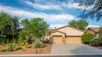 Tucson Single Family Home For Sale: 11259 N Mountain Breeze Drive