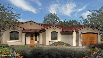Vail Single Family Home For Sale: 1475 N Cattle Tank Drive