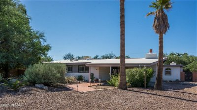 Tucson Single Family Home For Sale: 420 S Essex Lane