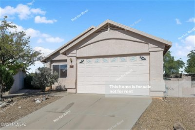 Tucson Single Family Home For Sale: 2117 S St Suzanne Drive