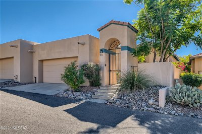 Tucson Single Family Home For Sale: 4618 E Red Mesa Drive