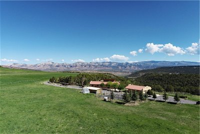 Molina CO Single Family Home For Sale: $2,495,000