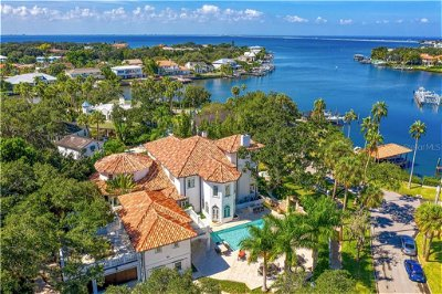 Tampa Single Family Home For Sale: 823 S BAYSIDE DRIVE