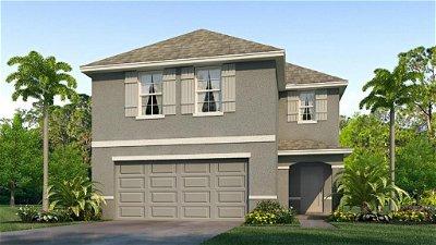 Hillsborough County Single Family Home For Sale: 12132 LILY MAGNOLIA LANE