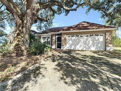 Hillsborough County, Pasco County, Pinellas County Single Family Home For Sale: 1012 PLEASANT PINE COURT