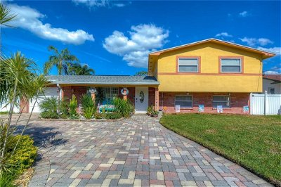 Hillsborough County, Pasco County, Pinellas County Single Family Home For Sale: 8327 ARCHWOOD CIRCLE