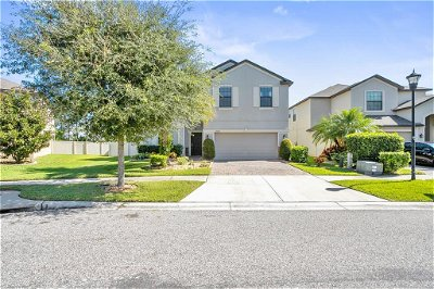 Hillsborough County, Pasco County, Pinellas County Single Family Home For Sale: 10209 CELTIC ASH DRIVE