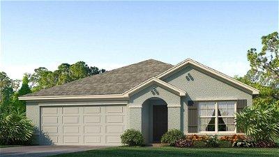 Hillsborough County Single Family Home For Sale: 16746 PARKER RIVER STREET