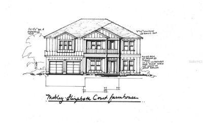 Hillsborough County Single Family Home For Sale: 3317 ELIZABETH COURT
