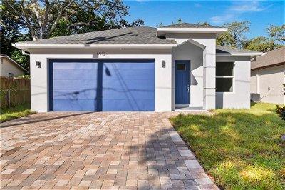 Hillsborough County Single Family Home For Sale: 8912 N NEWPORT AVENUE