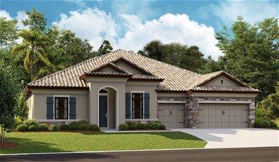 Hillsborough County Single Family Home For Sale: 10272 MEADOWRUN DRIVE