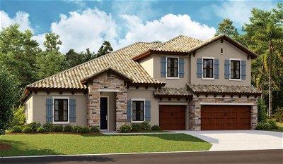 Hillsborough County Single Family Home For Sale: 10587 MEADOWRUN DRIVE