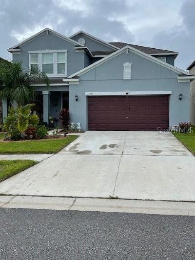 Hillsborough County Single Family Home For Sale: 13905 SAGE THRASHER LANE