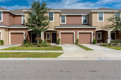 Hillsborough County, Pasco County, Pinellas County Single Family Home For Sale: 6917 WOODCHASE GLEN DRIVE