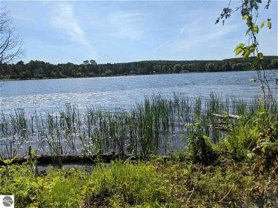 Central Lake MI Residential Lots & Land For Sale: $125,000