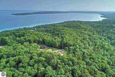 Leelanau County Residential Lots & Land For Sale: 11635 E Belanger Woods Drive