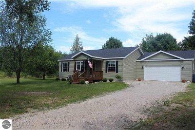Williamsburg Single Family Home For Sale: 8804 Birchview Drive
